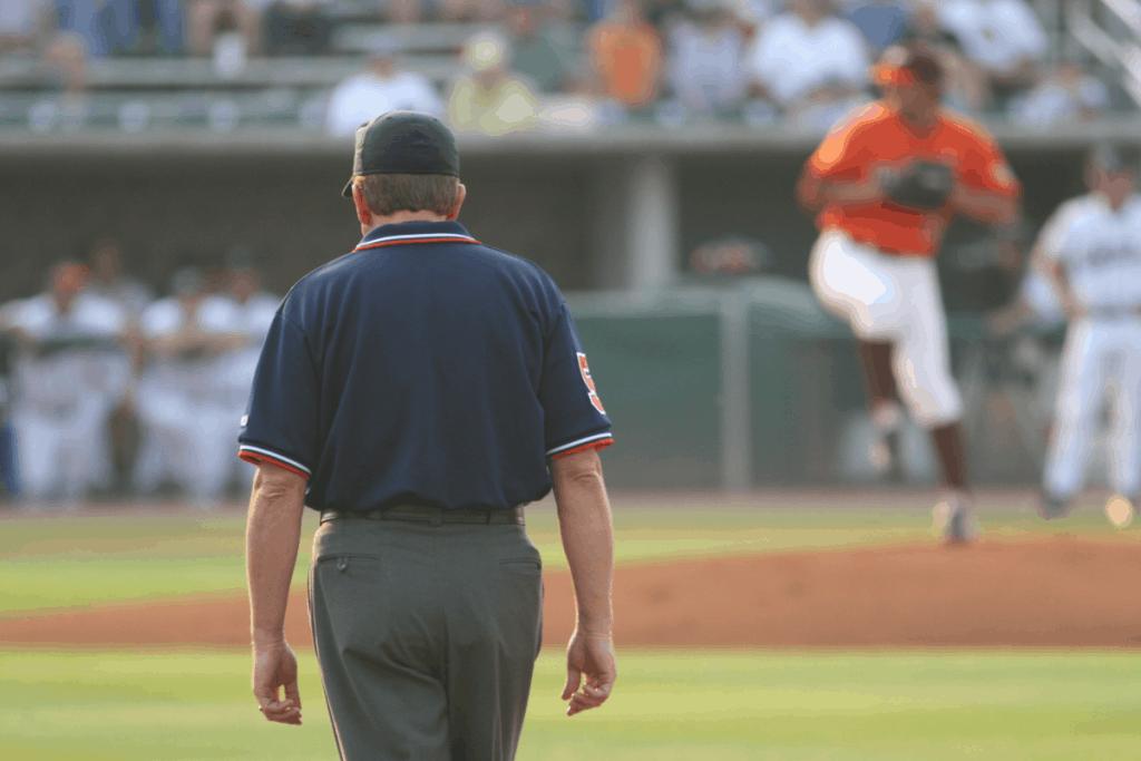 Baseball Umpire Watching Play