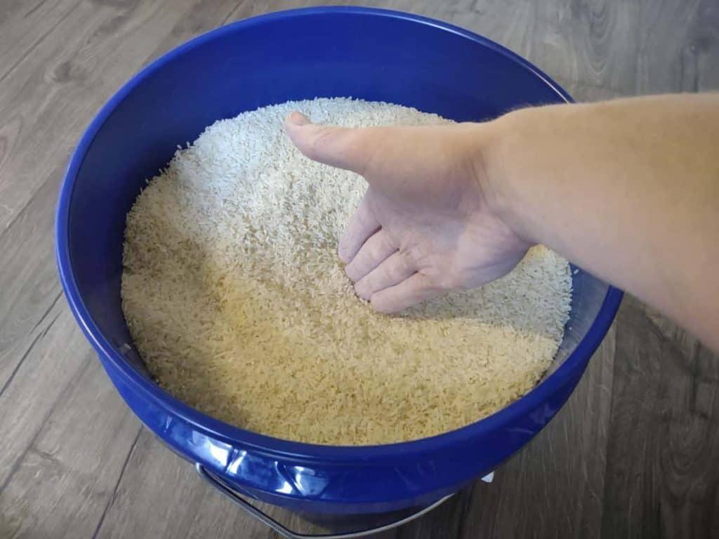 Rice Training Handshake